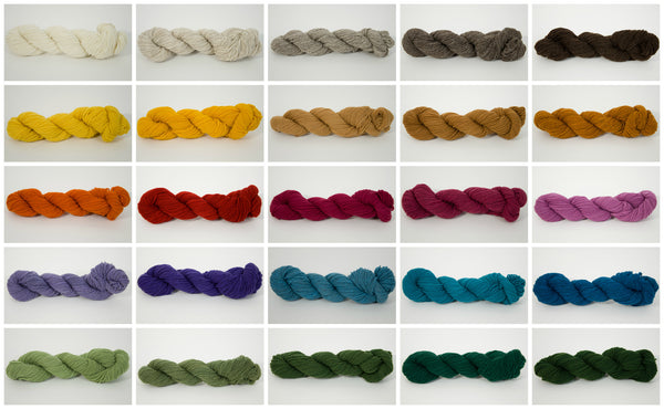 Blackberry Ridge - Mini-Skeins