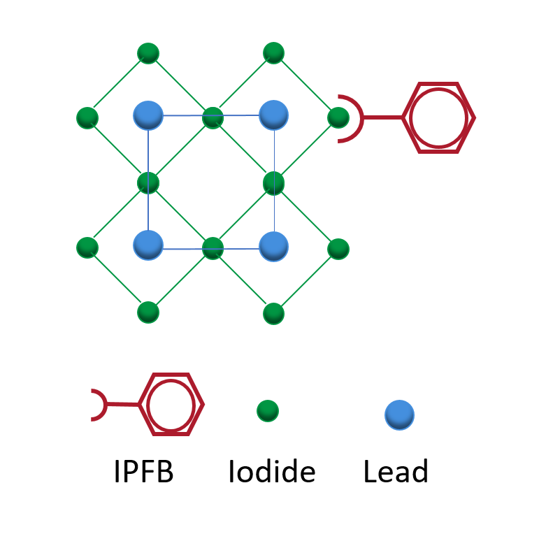 IPFB molecules binding to uncoordinated exposed halogen ions. Adapted from Abate et al (2014).