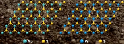 molybdenum and tungsten disulfide 2D materials