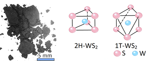 tungsten disulfide powder structure