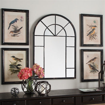 Bird Framed Prints / Set of 4
