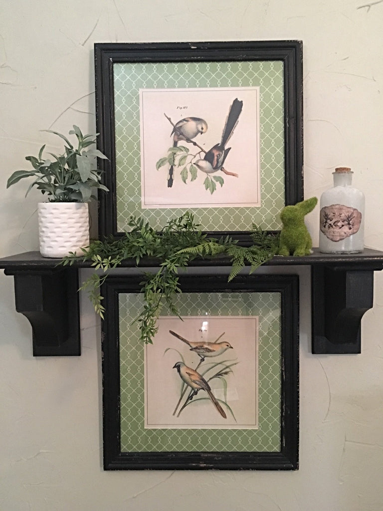 Hummingbird Framed Prints- Set/2