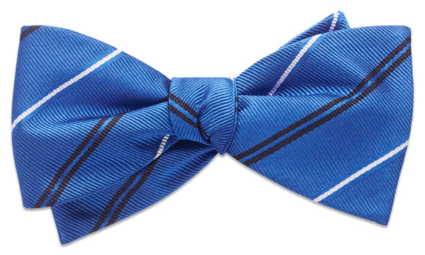 Warren Blue Self-Tie Bow Tie