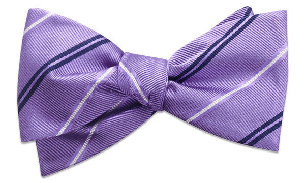 Warren Purple Self-Tie Bow Tie