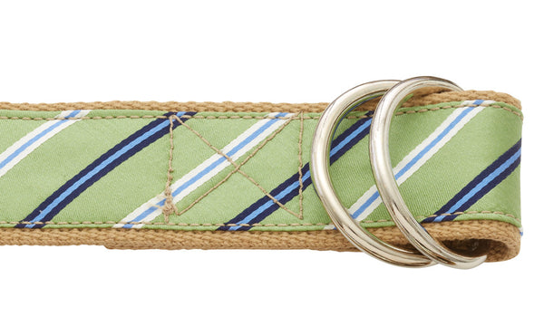 Emerald Lake D-ring Belt