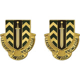 1st NCO Academy Unit Crest (Leadership Through Knowledge)