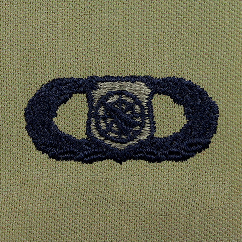 Air Force Weapons Director Embroidered Badge - Basic