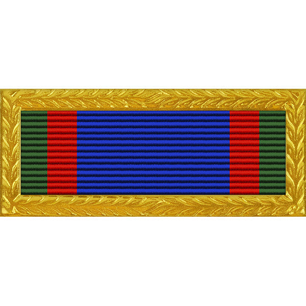 Texas State Guard Meritorious Unit Citation with Large Frame