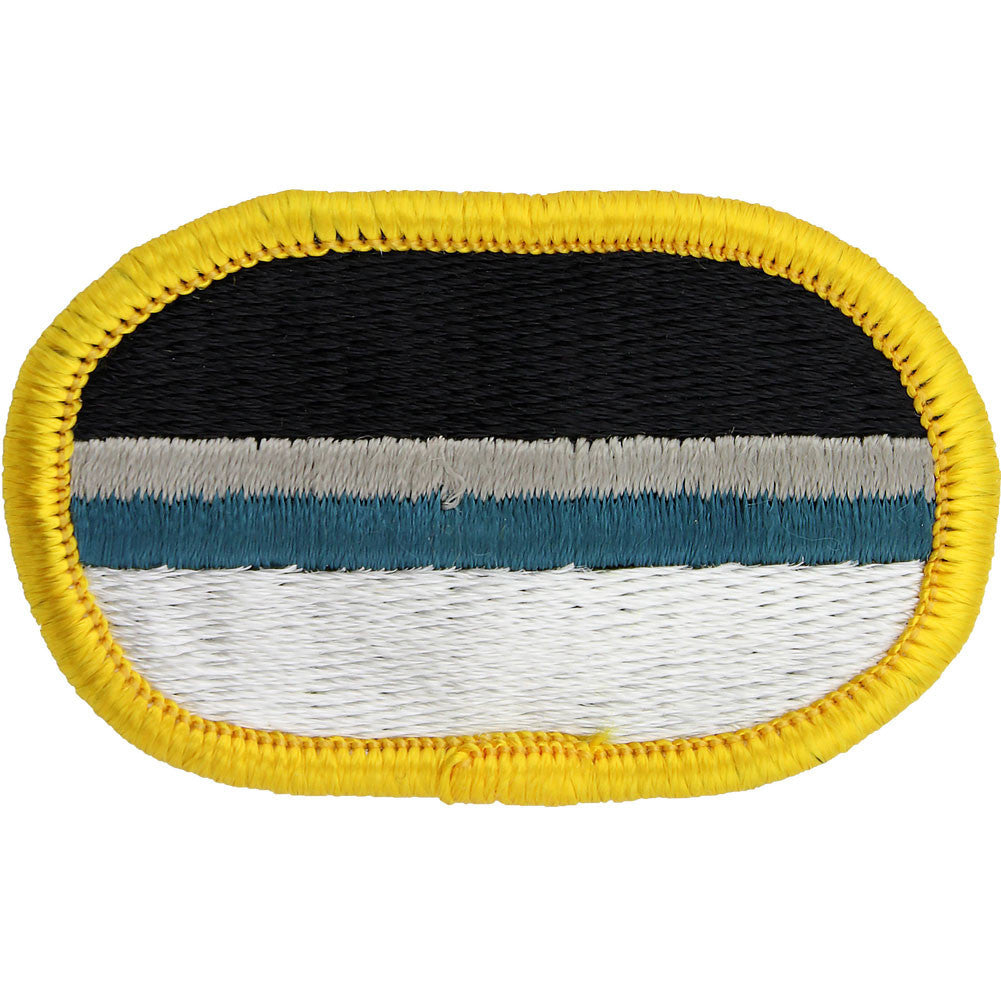 U.S. Army 14th Military Intelligence Battalion C Company (LRS) Oval Patch