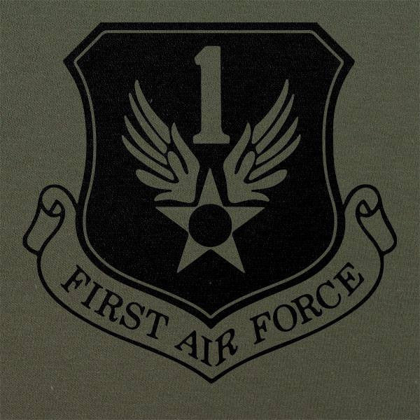 1st Air Force Subdued Patch T-Shirt