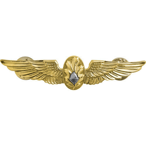 Navy Naval Flight Surgeon Insignia