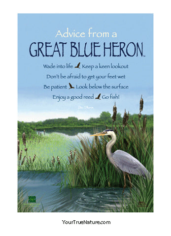 Advice from a Great Blue Heron Mini Poster