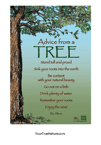 Advice from a Tree Mini Poster