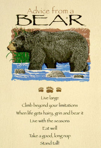 Advice from a Bear Greeting Card - Birthday