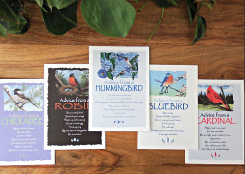 Advice from Nature Bird Greeting Card Set (Blank 15 pack)