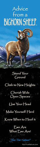 Advice from a Bighorn Sheep Laminated Bookmark