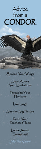 Advice from a Condor Laminated Bookmark