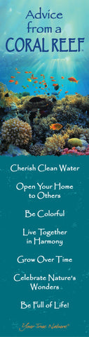 Advice from a Coral Reef Laminated Bookmark