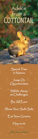 Advice from a Cottontail- Laminated Bookmark