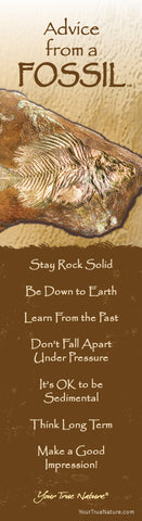 Advice from a Fossil Laminated Bookmark