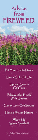 Advice from a Fireweed Laminated Bookmark
