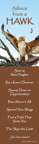 Advice from a Hawk Laminated Bookmark