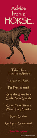 Advice from a Horse Laminated Bookmark
