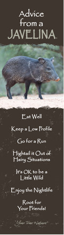 Advice from a Javelina - Laminated Bookmark