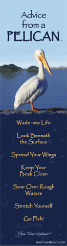 Advice from a Pelican Laminated Bookmark