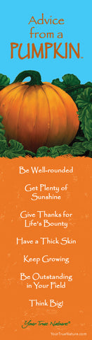 Advice from a Pumpkin Laminated Bookmark
