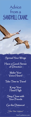 Advice from a Sandhill Crane Laminated Bookmark