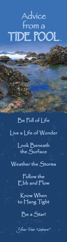 Advice from a Tide Pool Laminated Bookmark