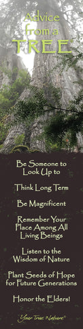Advice from a Tree- Old Growth- Laminated Bookmark