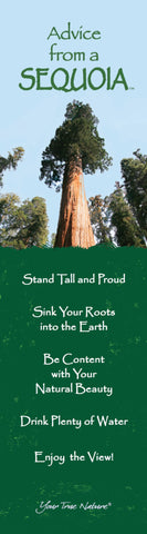 Advice from a Sequoia Laminated Bookmark