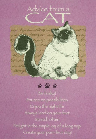 Advice from a Cat Greeting Card - Birthday