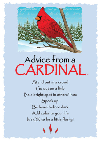 Advice from a Cardinal - Winter - Greeting Card - Blank