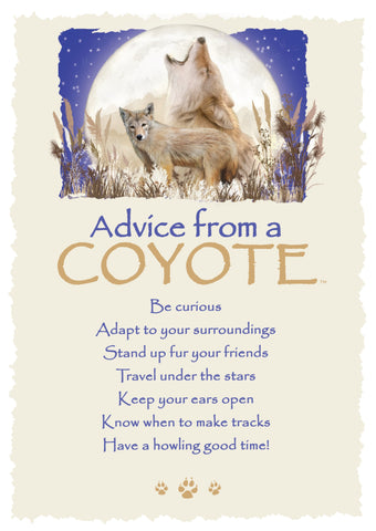 Advice from a Coyote Greeting Card - Blank