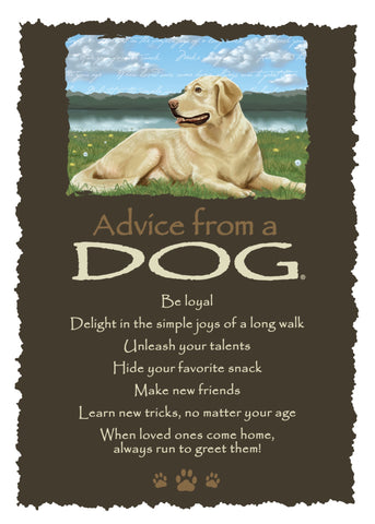 Advice from a Dog Greeting Card - Blank