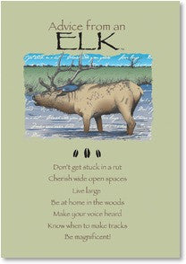Advice from an Elk Greeting Card - Birthday