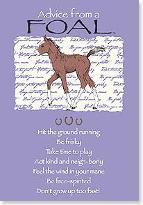 Advice from a Foal Greeting Card - Birthday