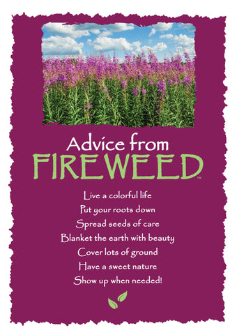 Advice from Fireweed Greeting Card - Blank