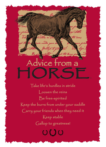 Advice from a Horse Greeting Card - Blank