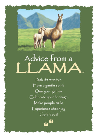 Advice from a Llama Greeting Card - Blank