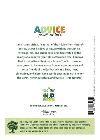 Advice from a Moose Greeting Card - Blank