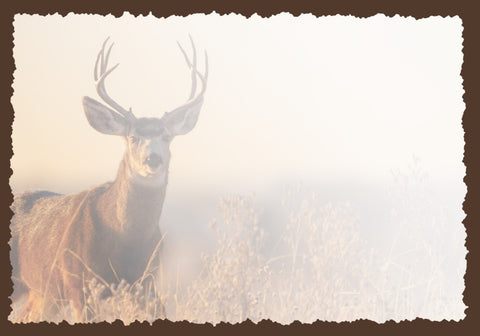 Advice from a Mule Deer Greeting Card - Blank