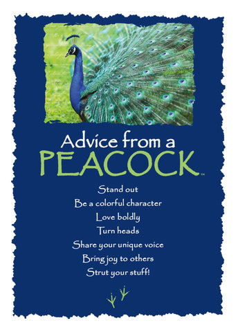 Advice from a Peacock Greeting Card - Blank