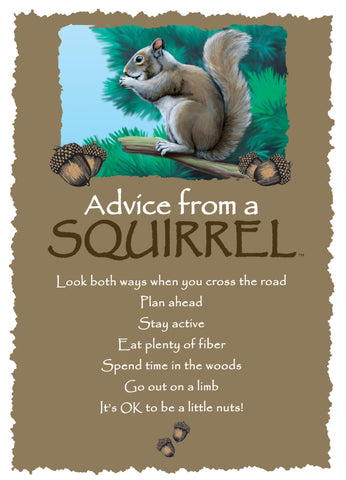 Advice from a Squirrel Greeting Card - Blank
