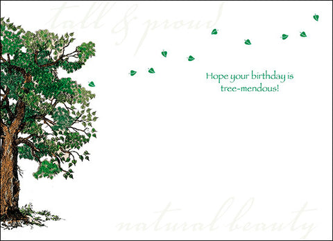 Advice from a Tree Greeting Card - Birthday