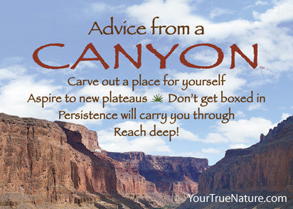 Advice from a Canyon - Grand Canyon National Park Jumbo Magnet