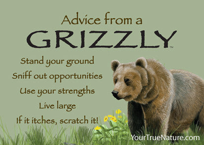 Advice from a Grizzly Jumbo Magnet